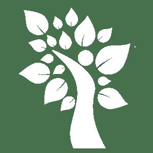 לוגו חלום חדש