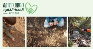 green network outdoor learning