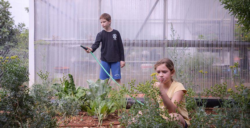 תלמידים עובדים בגינה