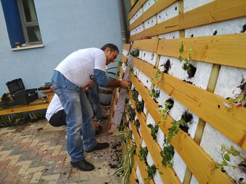 """קירות ירוקים ופינות ישיבה טבעיות - מתנדבי """"בזק"""""""